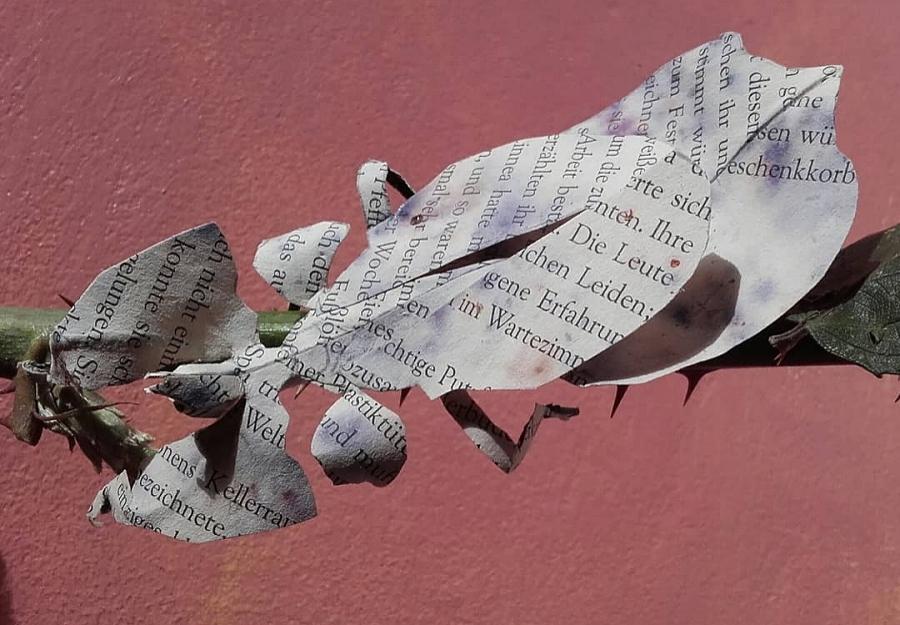 Paper Art Insekten